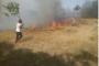 Waldbrände bedrohen Mensch und Natur in der ostanatolischen Stadt Tunceli (Dersim)