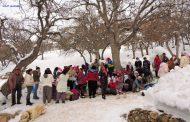 La recherche identitaire : Les identités au Dersim