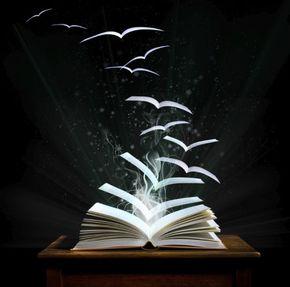 Kitap / Dosya / Araştırma