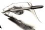 Kewraêni – Ali Dikme